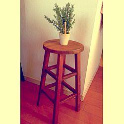 リビング/丸椅子/丸い椅子/フェイクグリーンのインテリア実例 - 2013-12-15 11:10:21