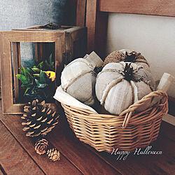 リメイク/パンプキンオブジェ/かぼちゃオブジェ/ハロウィン/HALLOWEEN...などのインテリア実例 - 2020-09-28 16:22:14