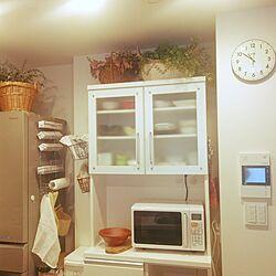 キッチン/フェイクグリーン/3コインズ雑貨/どらいふらわー♡/ニトリのインテリア実例 - 2017-01-09 10:59:36