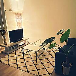 観葉植物/ニトリ/照明/ドライフラワー/リビング...などのインテリア実例 - 2021-07-28 21:57:05