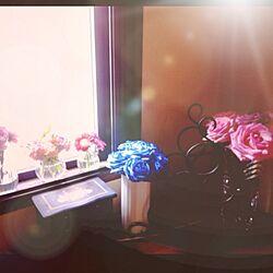 リビング/窓/青/春/お花たち...などのインテリア実例 - 2013-03-24 14:49:51