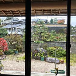 和風/田舎暮らし/玄関/入り口のインテリア実例 - 2021-05-15 18:48:17