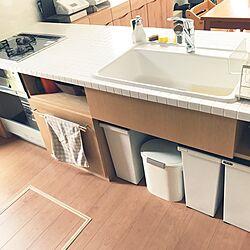 キッチン/ガスオーブン/白いタイルのキッチンのインテリア実例 - 2017-05-25 10:22:11
