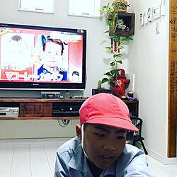 TVボード/多肉/NO GREEN NO LIFE/ステッカー手作り/ダイソー...などのインテリア実例 - 2019-04-25 07:58:05