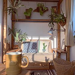 ベッド周り/観葉植物/ソファー/植物/DIY...などのインテリア実例 - 2019-10-10 21:29:57