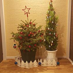 玄関/入り口/もみの木/クリスマスツリーのインテリア実例 - 2018-11-30 19:52:21