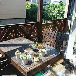 玄関/入り口/野菜畑/日光浴/ウッドデッキ/手作りテーブル...などのインテリア実例 - 2014-08-02 10:44:55