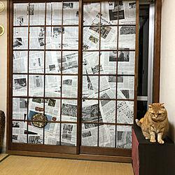 ミックスインテリア/障子/和室/壁/天井のインテリア実例 - 2020-08-01 20:58:00