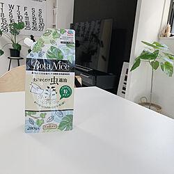BotaNice/植物のある暮らし/多肉植物/ガーデニング/観葉植物...などのインテリア実例 - 2020-09-15 10:38:05