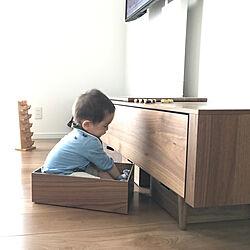 リビング/テレビボードの下/おもちゃ収納/ウッド インボックス/木の箱...などのインテリア実例 - 2018-05-09 05:05:47