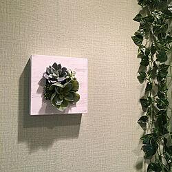 ニトリ/観葉植物/ドライフラワー/雑貨/観葉植物...などのインテリア実例 - 2020-05-20 05:48:03