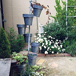 玄関/入り口/雑貨/ガーデニング/庭/植物のインテリア実例 - 2015-04-28 18:33:30