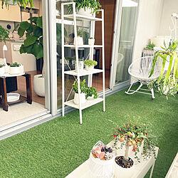 山善ガーデンラック/人工芝/北欧/植物の飾り方/植物に囲まれて暮らす...などのインテリア実例 - 2021-09-25 09:56:32