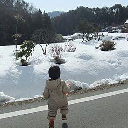 田舎/雪景色/インテリアじゃないですが…/帰省のインテリア実例 - 2014-01-03 22:52:15