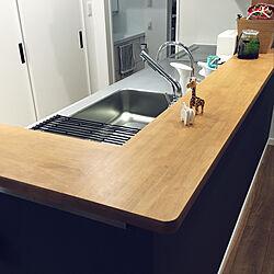 キッチン/ステンレス天板/水切り/水ほうき水栓/TOTOキッチン...などのインテリア実例 - 2019-02-21 12:44:12
