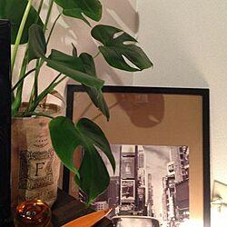 植物/間接照明/雑貨/テレビボード/TVボード...などのインテリア実例 - 2013-06-09 22:16:19