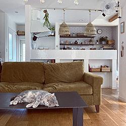 背面収納/照明/IKEA/キッチン/ペットと暮らす家...などのインテリア実例 - 2021-08-12 10:12:47