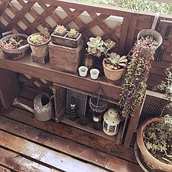 玄関/入り口/DIY/多肉植物のインテリア実例 - 2018-05-02 10:57:55