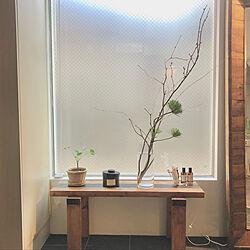 玄関インテリア/桜/春/季節を楽しむ暮らし/ストレスのない暮らしへ...などのインテリア実例 - 2021-01-16 08:21:05