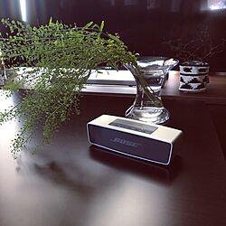 ベッド周り/Bose Sound Link Mini/花瓶/オーディオ/BOSEのインテリア実例 - 2017-05-08 11:44:29