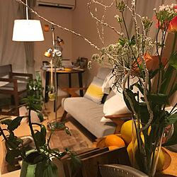 ソファーまわり/お花/一人暮らし/照明/IKEA...などのインテリア実例 - 2021-05-26 00:00:03