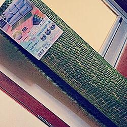 部屋全体/い草/ヒコラー/イケヒコ・モニター/い草のある暮らし...などのインテリア実例 - 2021-04-23 12:22:04