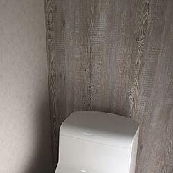壁/天井/RE-7451/RE7451/トイレの壁/サンゲツ...などのインテリア実例 - 2017-03-08 09:17:10