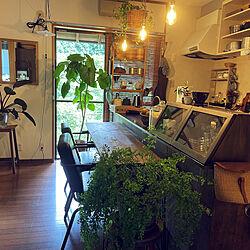 カウンターテーブル/賃貸でも楽しく♪/観葉植物/照明/DIY...などのインテリア実例 - 2021-07-23 16:00:43