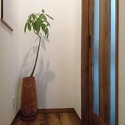 部屋全体/観葉植物/黒い家/新築一戸建てのインテリア実例 - 2018-04-12 16:28:33