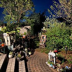植物のある暮らし/ガーデニング/多肉植物のある暮らし/多肉寄せ植え/玄関/入り口のインテリア実例 - 2020-08-17 20:28:47