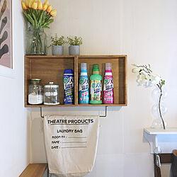 ランドリーバッグ/ランドリールーム/洗濯機周り/洗剤置き場/壁面収納...などのインテリア実例 - 2021-04-18 16:53:51