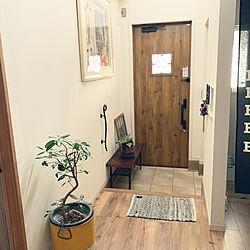 玄関マット/ゴムの木/玄関マット変えたい。。/カメラマーク消し/玄関/入り口のインテリア実例 - 2020-02-02 13:24:28