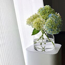 ベッド周り/紫陽花/花瓶/カーテン/花のある暮らしのインテリア実例 - 2017-05-31 15:46:30
