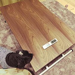 昇降式テーブル/ニトリ/Loafer/1.5平屋/机のインテリア実例 - 2019-03-28 22:57:11