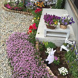玄関/入り口/ガーデニング/ナチュラル/DIY/多肉植物...などのインテリア実例 - 2016-04-24 16:32:07