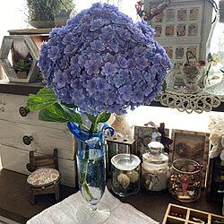 ガラスのフラワーベース/フラワーベース/紫陽花/お花のある暮らし/ドライフラワーのある暮らし...などのインテリア実例 - 2021-06-29 09:26:09