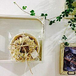 壁/天井/手作り/リメイクトレー/ブロともちゃん手づくりリース♡/シュガーバインのインテリア実例 - 2013-12-29 23:38:56