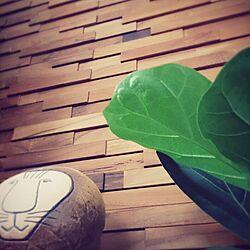 壁/天井/北欧/観葉植物/リサラーソン/ウッドタイルのインテリア実例 - 2014-09-04 08:08:24