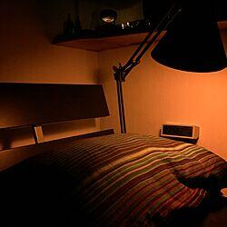 ベッド周り/Philips Hue/PHILIPS/hue/サンプル当選のインテリア実例 - 2016-06-22 00:03:30
