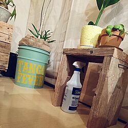 部屋全体/DIY/リメ缶/リメイク缶/観葉植物...などのインテリア実例 - 2017-03-26 17:22:20
