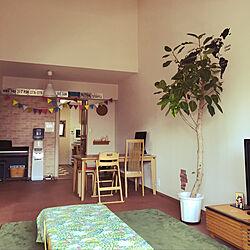 リビング/観葉植物/無印良品/IKEA/DIYのインテリア実例 - 2018-05-06 14:23:49