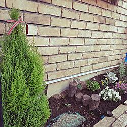 玄関/入り口/レンガのおうち/花壇の寄せ植え/花のある生活/中古住宅...などのインテリア実例 - 2020-10-13 07:35:17