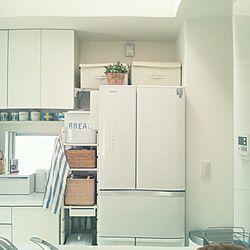 キッチン/無印良品/冷蔵庫/フェイクグリーン/ブレッド缶...などのインテリア実例 - 2014-03-31 10:31:06