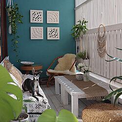 テラス/犬との暮らし/BOHOインテリア/ビーチスタイル/観葉植物のある部屋...などのインテリア実例 - 2020-04-16 10:26:24