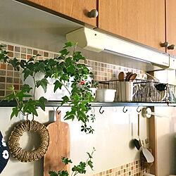 キッチン/3COINS/タイル風シート/シュガーバイン/アイビー...などのインテリア実例 - 2017-12-22 08:08:40