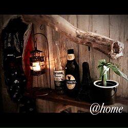 壁/天井/パキラ/ビール瓶/流木/一人暮らし...などのインテリア実例 - 2015-08-01 23:39:38