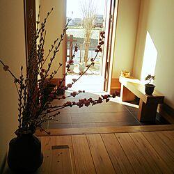玄関/入り口/シンプル/キャンバスは白/盆栽はじめました/クロマツ...などのインテリア実例 - 2016-02-26 08:54:14