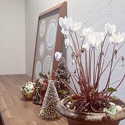 玄関/入り口/クリスマス/2020.11.5/珪藻土の壁/北欧、暮らしの道具店...などのインテリア実例 - 2020-11-05 08:21:52