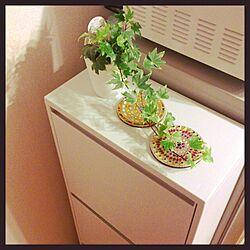 リビング/ゴミ箱/無印良品 ゴミ箱/コースター/植物のインテリア実例 - 2014-05-29 16:08:36
