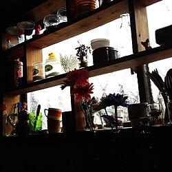 キッチン/古い家/DIY/カラフル/昭和レトロ...などのインテリア実例 - 2015-01-29 07:41:14